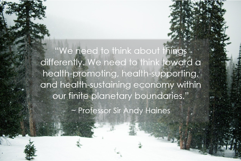 We need to think about things differently. We need to think toward a health-promoting, health-supporting, and health-sustaining economy within our finite planetary boundaries. Professor Sir Andy Haines